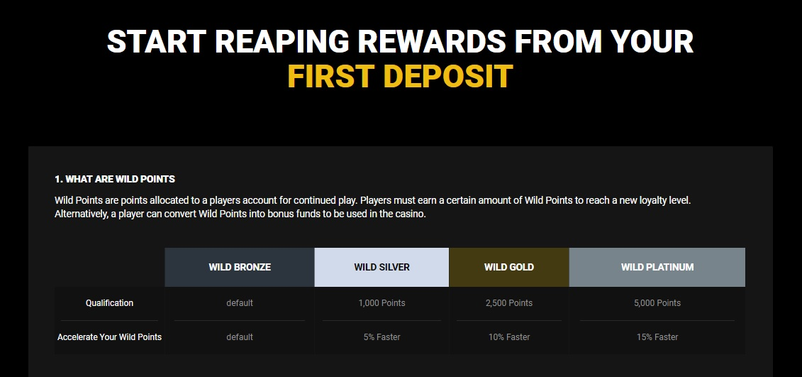 GoWild Casino Loyalty Program