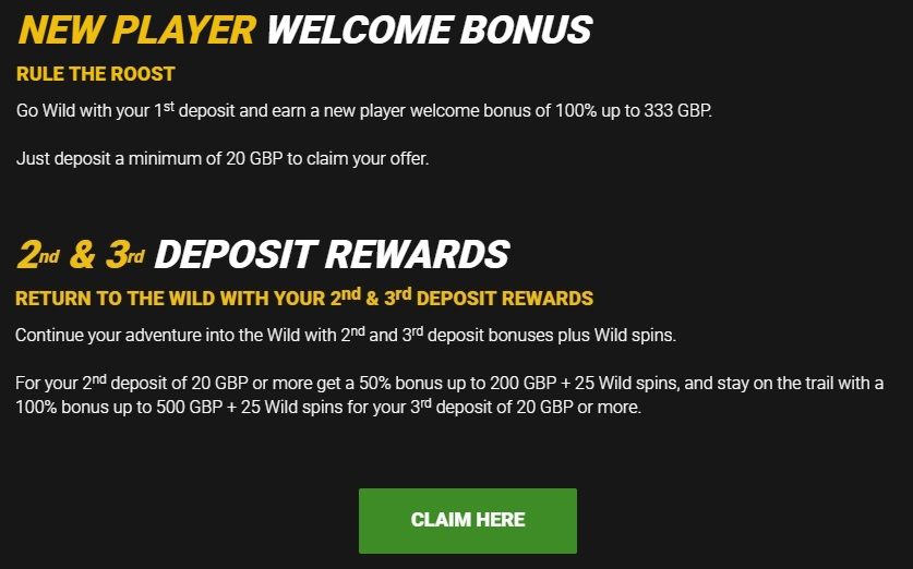 GoWild Casino Welcome Bonus